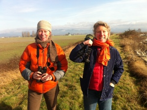 Scouting for Snowy Owls